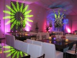 Boda Moderno Eventos 1